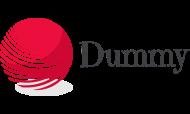 logo-dummy01
