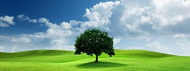 <p><span>バイオで地球環境を救う</span></p>